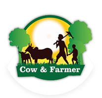 Cow and Farmer